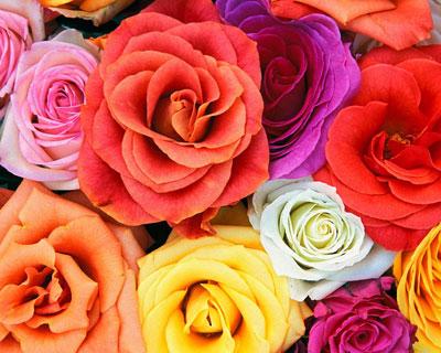 Цветы могут доставить даже из-за океана