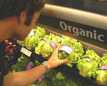 Будем иметь ли собственную органическую пищу?