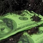 Что ждет аграриев с приходом рынка земли